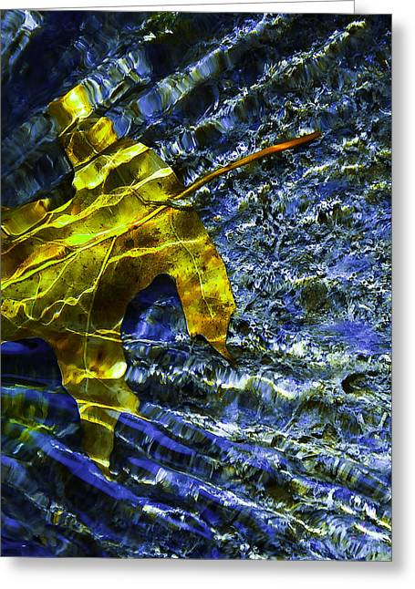 Moss Greeting Cards - Leaf In Creek - Blue Abstract Greeting Card by Darryl Dalton