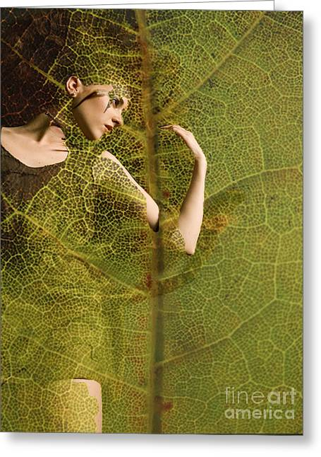 Cocoon Digital Greeting Cards - Leaf Matter Greeting Card by Maureen Tillman