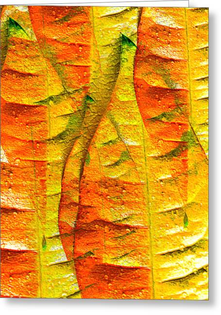 Botanical Greeting Cards - Leaf ReLeaf Greeting Card by Marie Jamieson