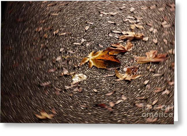 Lint Greeting Cards - Leaf Spin Greeting Card by Emily Lint