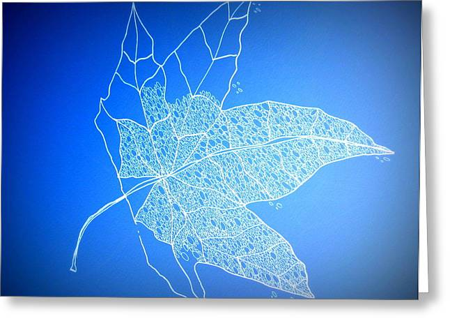 Catherine White Greeting Cards - Leaf Study 1 Greeting Card by Cathy Jacobs