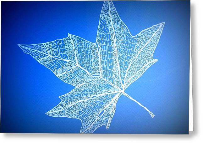 Catherine White Greeting Cards - Leaf Study 3 Greeting Card by Cathy Jacobs
