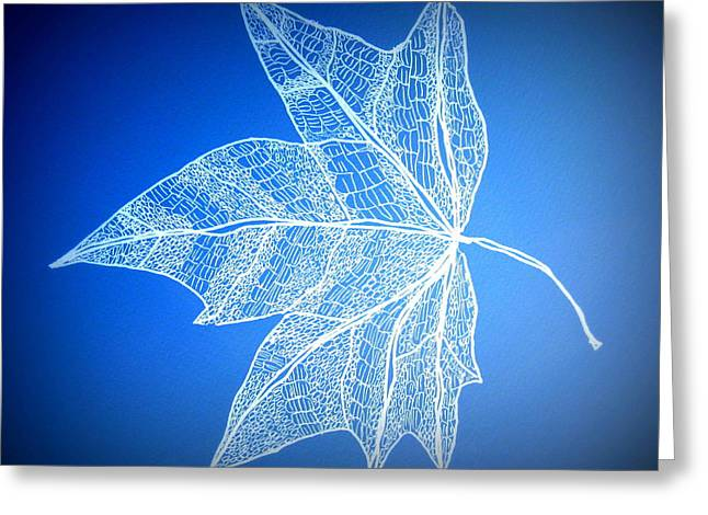 Catherine White Greeting Cards - Leaf Study 5 Greeting Card by Cathy Jacobs