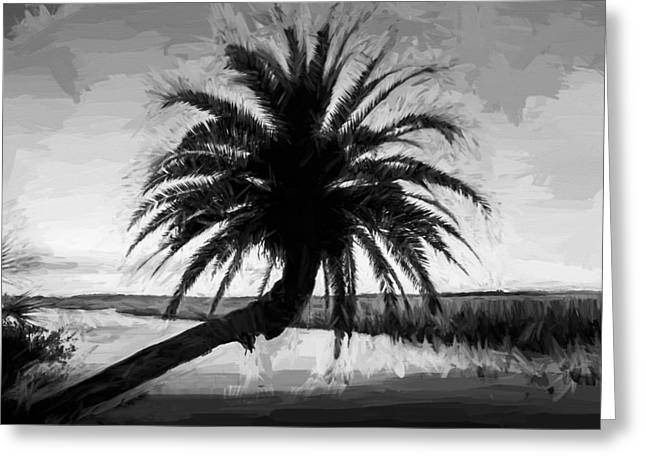 Paradise Road Greeting Cards - Leanging Palm Tree Loop Road Painted BW    Greeting Card by Rich Franco