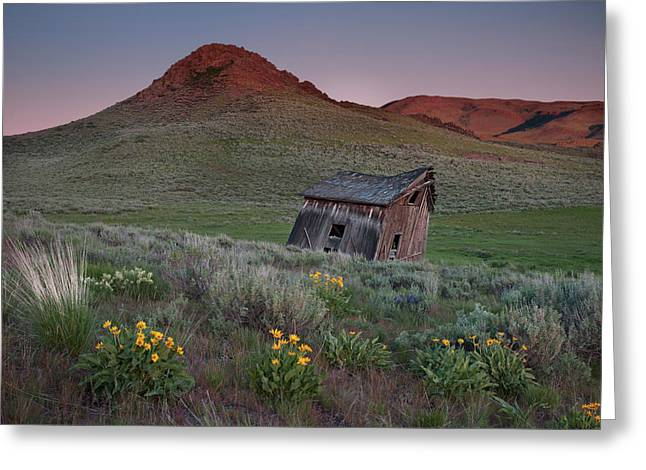 Leaning Shed Greeting Card by Leland D Howard