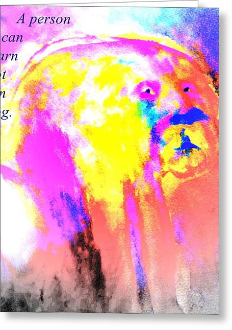 Sweating Greeting Cards - Learn From The Dog Greeting Card by Hilde Widerberg