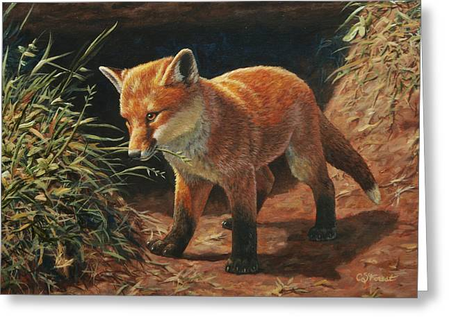 Puppies Greeting Cards - Red Fox Pup - Learning Greeting Card by Crista Forest