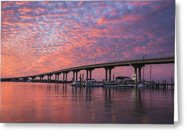 Florida Bridge Greeting Cards - Learning To Kneel Greeting Card by Mike Lang