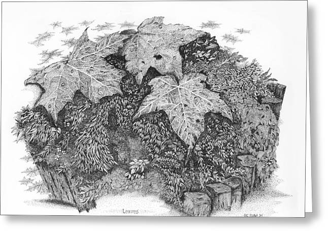 Fallen Leaf Drawings Greeting Cards - Leaves and Leaves Greeting Card by Kaz Ayukawa