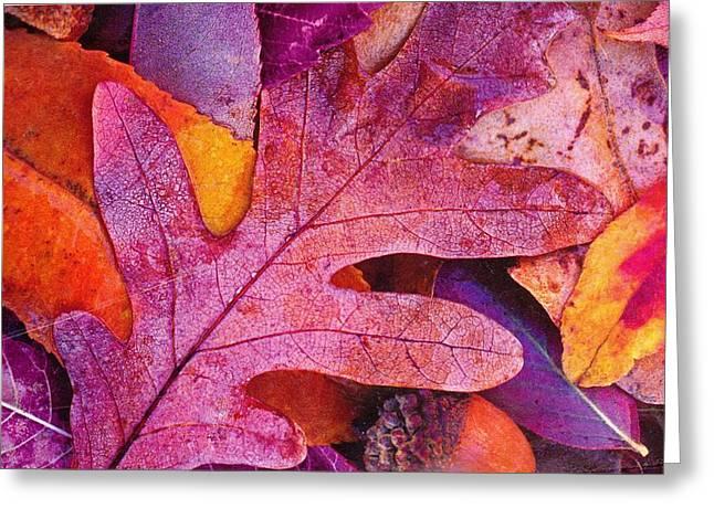Leaves Greeting Card by Anne-Elizabeth Whiteway