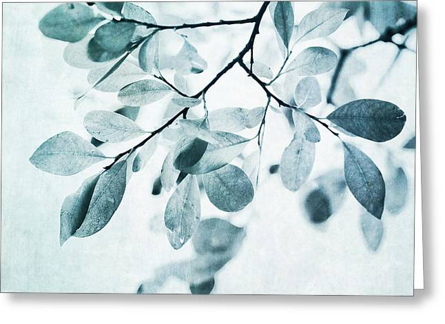 Branch Greeting Cards - Leaves In Dusty Blue Greeting Card by Priska Wettstein