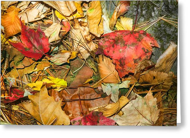 North Fork Greeting Cards - Leaves of the Fall Great Smoky Mountains Painted  Greeting Card by Rich Franco