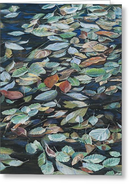 Birdseye Greeting Cards - Leaves on Pond Greeting Card by Nick Payne
