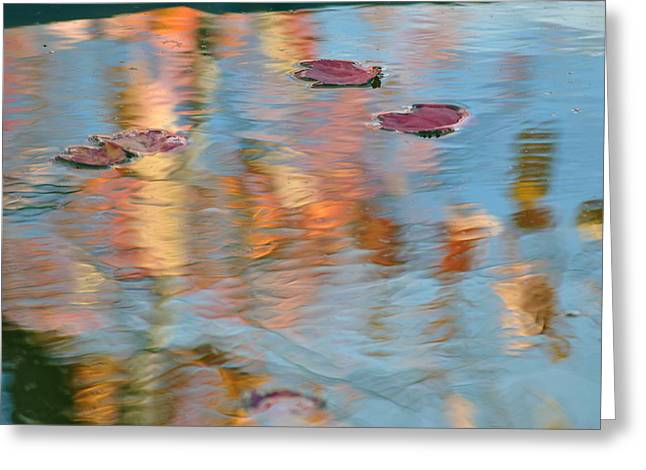 Reflecting Water Greeting Cards - Leaves Real and Reflected Greeting Card by Frozen in Time Fine Art Photography