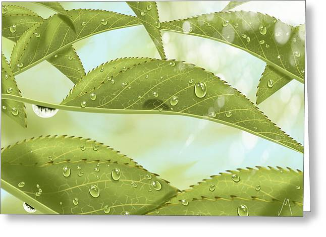 Drops Greeting Cards - Leaves Greeting Card by Veronica Minozzi