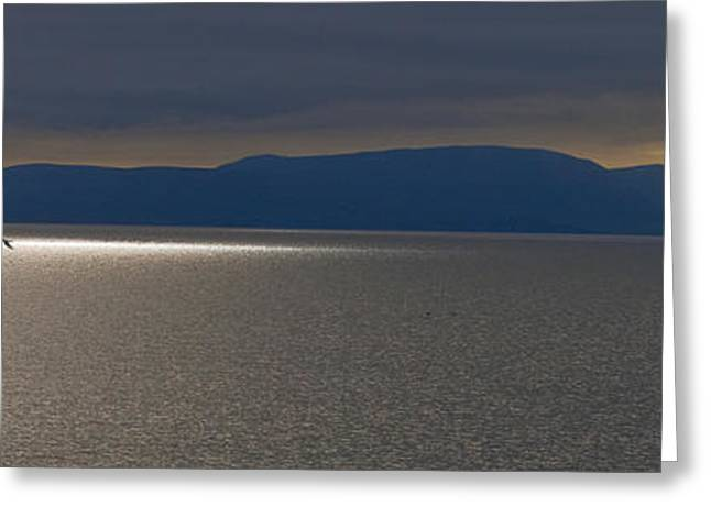 Boats On Water Greeting Cards - Leaving Orkney Scotland Greeting Card by Sally Ross
