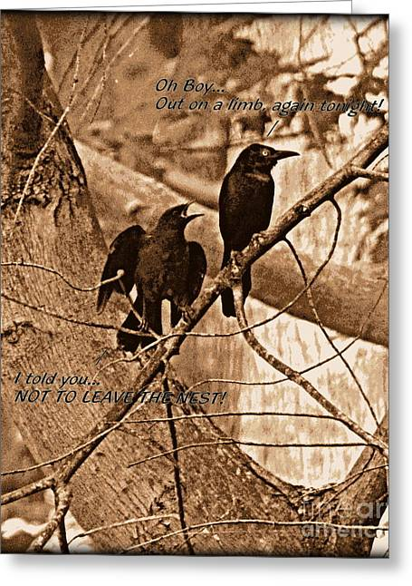 Disobeying Greeting Cards - Leaving the Nest Greeting Card by Richard W Burdett