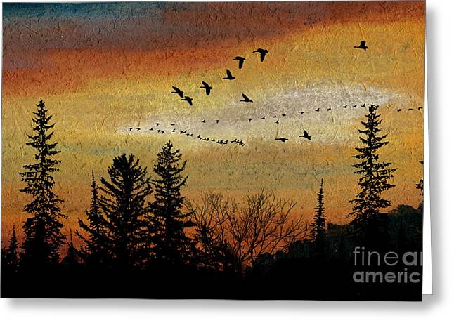 Illuminate Pastels Greeting Cards - Leaving the North Behind Greeting Card by R Kyllo