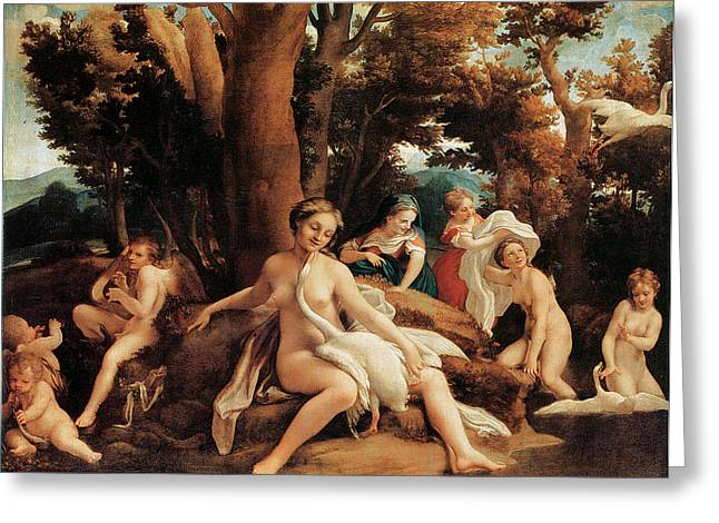 Leda And Swan Greeting Card by Correggio