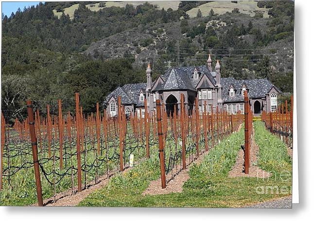 Sonoma Valley Greeting Cards - Ledson Winery and Vineyard in Late Winter Just Before The Bloom 5D22192 Greeting Card by Wingsdomain Art and Photography
