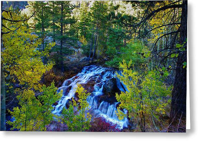 Fall Colors Greeting Cards - Lee Vining Creek Falls Greeting Card by Scott McGuire