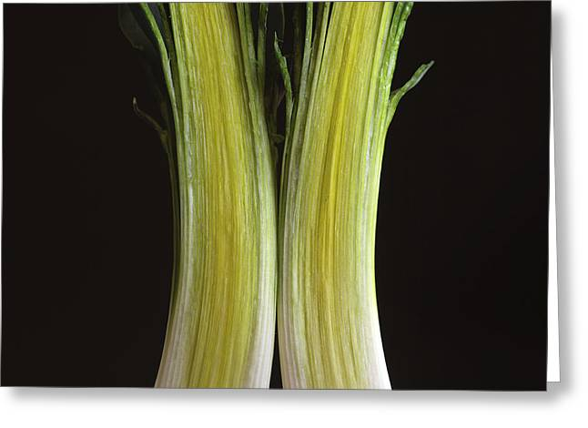 Part Of Greeting Cards - Leek Greeting Card by Bernard Jaubert