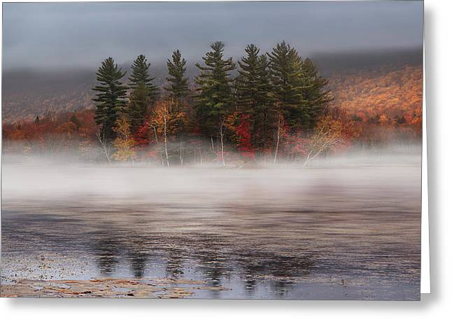 Foggy Day Greeting Cards - Lefferts Pond Greeting Card by Magda  Bognar