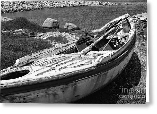 Delos Greeting Cards - Left Behind on Delos mono Greeting Card by John Rizzuto