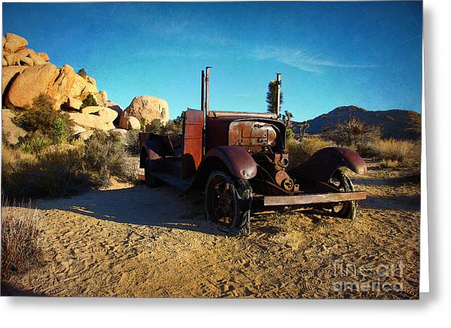 Shell Texture Greeting Cards - Left For Dead - Joshua Tree National Park Greeting Card by Glenn McCarthy