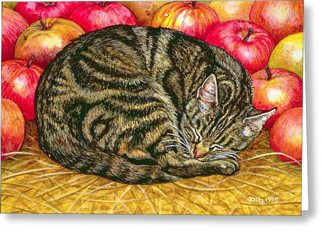 Apple Greeting Cards - Left Hand Apple Cat Greeting Card by Ditz