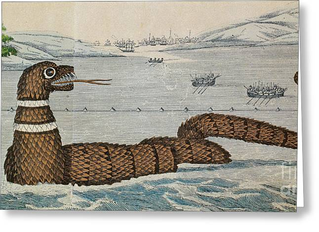 New England Ocean Greeting Cards - Legendary Gloucester Sea Serpent, 1817 Greeting Card by Photo Researchers