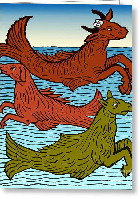 Sea Horse Greeting Cards - Legendary Sea Creatures, 15th Century Greeting Card by Science Source