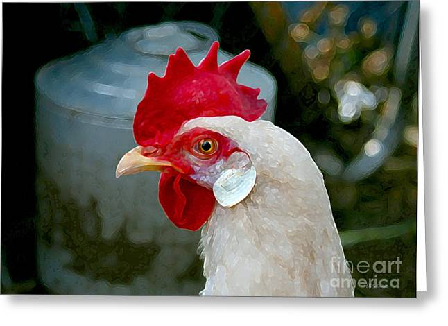Chicken On Eggs Greeting Cards - Leghorn Chicken Greeting Card by E B Schmidt