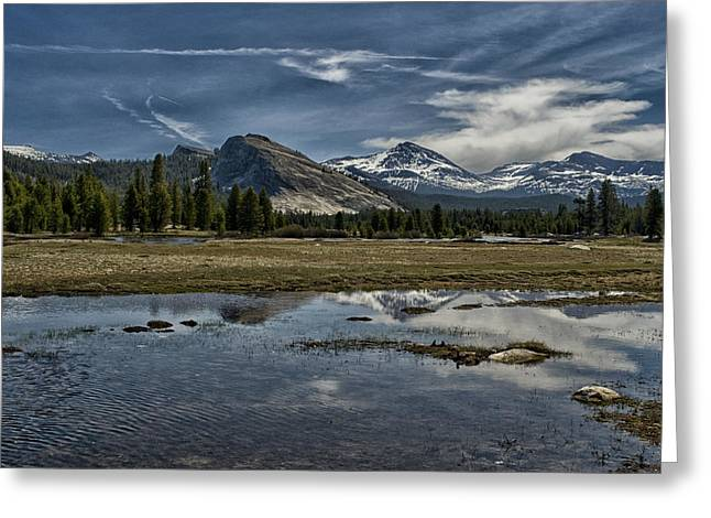Cloudy Days Greeting Cards - Lembert Dome and Tuolumne Meadows Greeting Card by Cat Connor