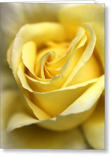 Lemon Lush Greeting Card by Joy Watson