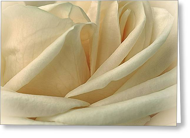 Lemon Meringue Greeting Card by Darlene Kwiatkowski