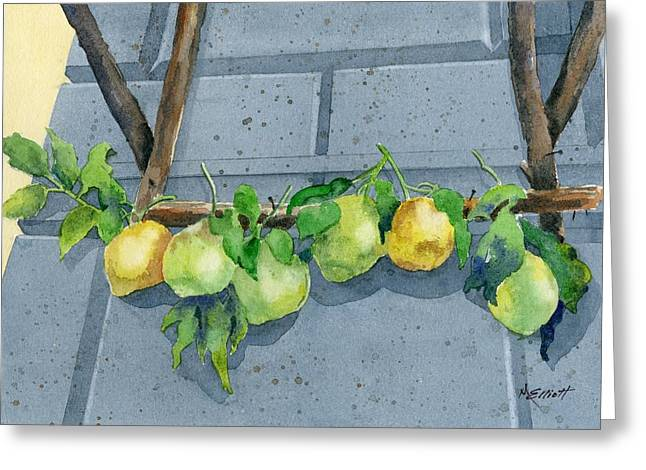 Lemon Swag Greeting Card by Marsha Elliott