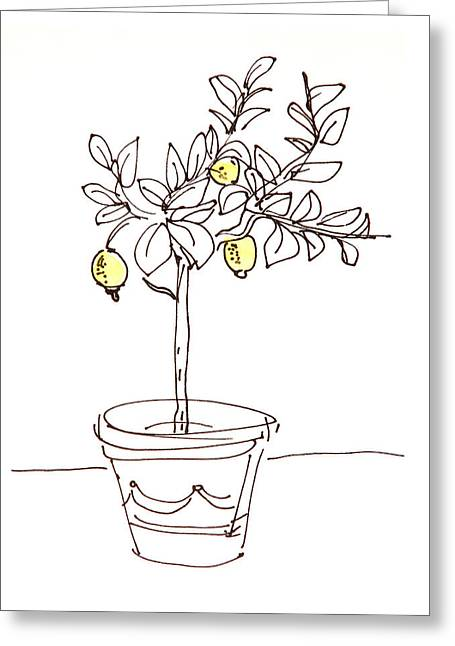 Sour Drawings Greeting Cards - Lemon Tree Greeting Card by Karin Stein