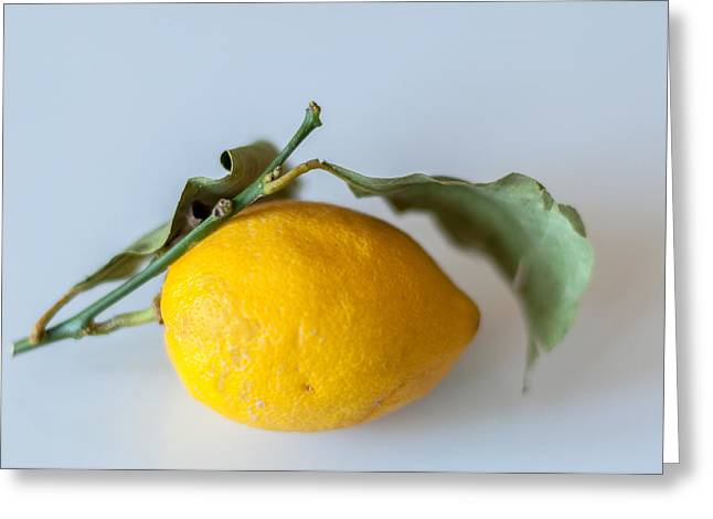 Organic Greeting Cards - Lemon with leaves Greeting Card by Frank Gaertner