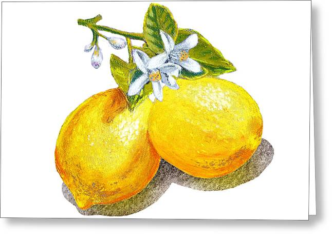 Lemon Art Paintings Greeting Cards - Lemons And Blossoms Greeting Card by Irina Sztukowski