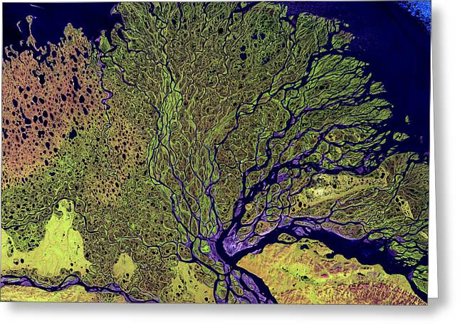 Landforms Greeting Cards - Lena River Delta Greeting Card by Adam Romanowicz