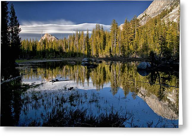 Pond Photographs Greeting Cards - Lenticular Reflection Greeting Card by Cat Connor