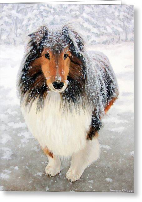 Leo In The Snow Greeting Card by Sandra Chase