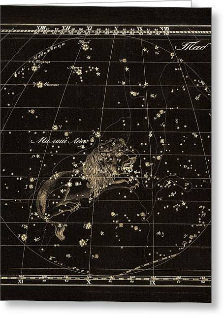 Cyrillic Greeting Cards - Leo Minor constellation, 1829 Greeting Card by Science Photo Library