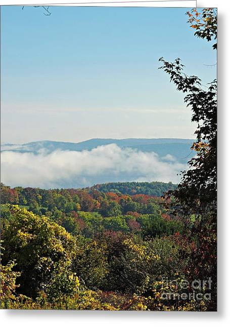 Gathering Greeting Cards - Leonard Harris State Park from Look Out  Greeting Card by Helene Guertin
