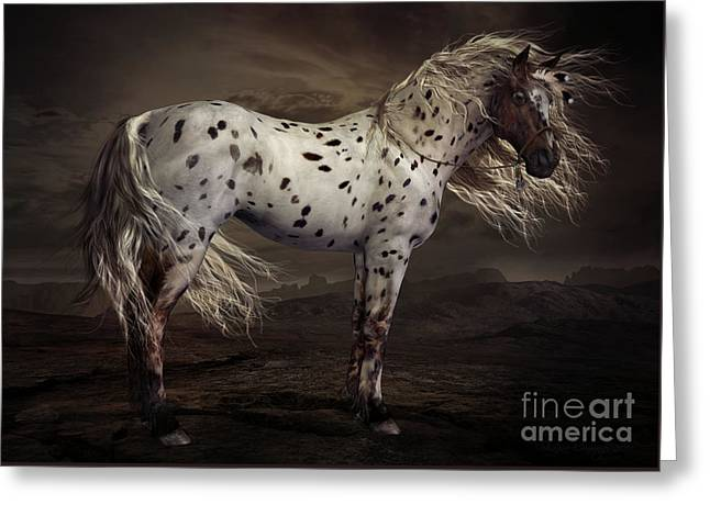 Spotted Horse Greeting Cards - Leopard Appalossa Greeting Card by Shanina Conway