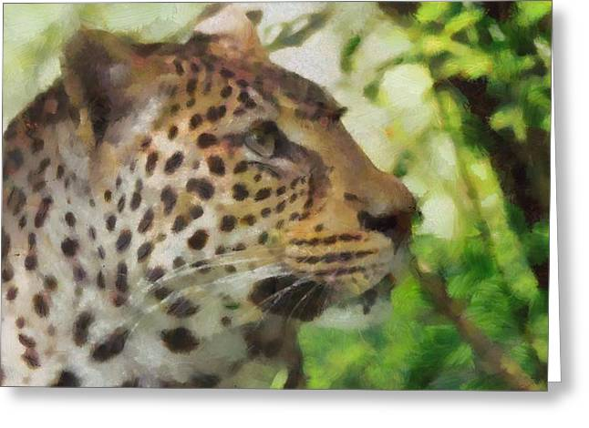 Leopard In The Wild Greeting Card by Dan Sproul