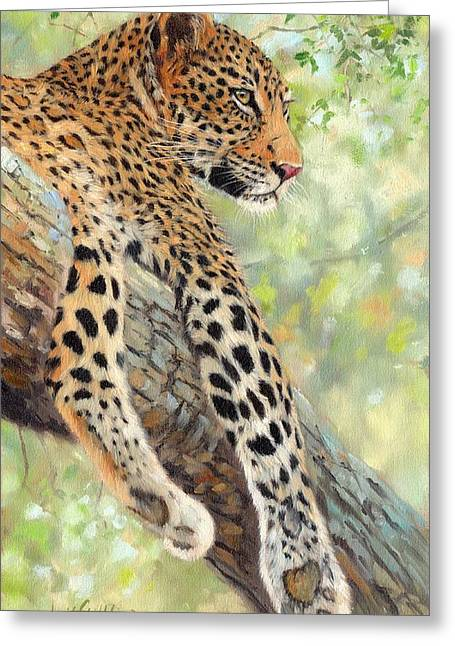 Leopard Print Greeting Cards - Leopard in Tree Greeting Card by David Stribbling