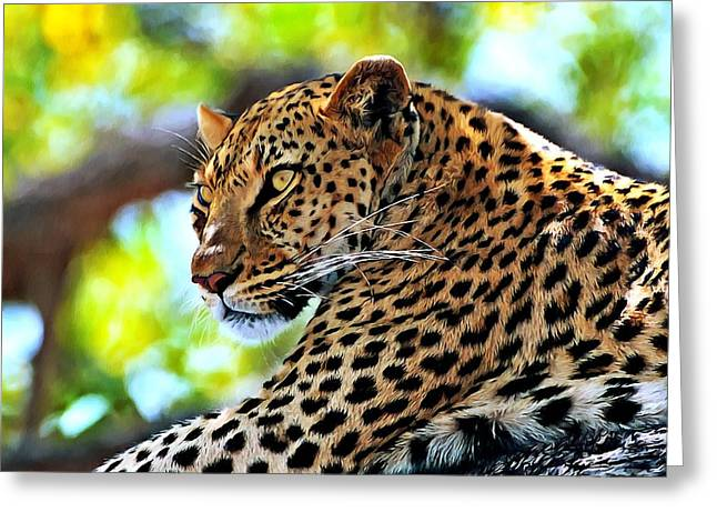 Ly Greeting Cards - Leopard lying in a tree Greeting Card by Lanjee Chee