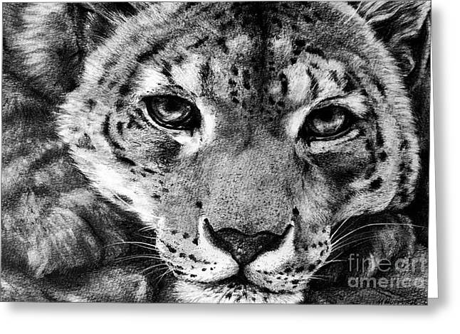 Leopard Drawings Greeting Cards - Leopard Greeting Card by Mark Hufford